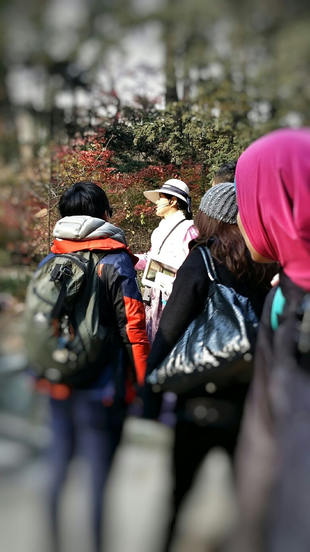 Guide Tour Secret Garden Changdeokgung Palace Seoul Beautifulkorea Autumn2014 Streetphotography Travel Photography