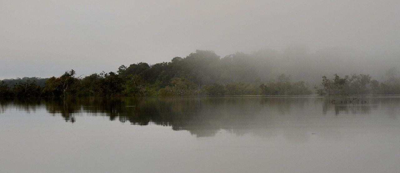 Beautiful stock photos of jungle, Day, Fog, Lake, Nature