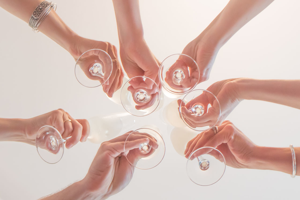 birthday celebration, seen from an unusual perspective Celebration Champagne Champagne Flute Close-up Day Friendship Holding Human Body Part Human Hand People Seven Friends Toast Togetherness Variation White Background Women View From Below