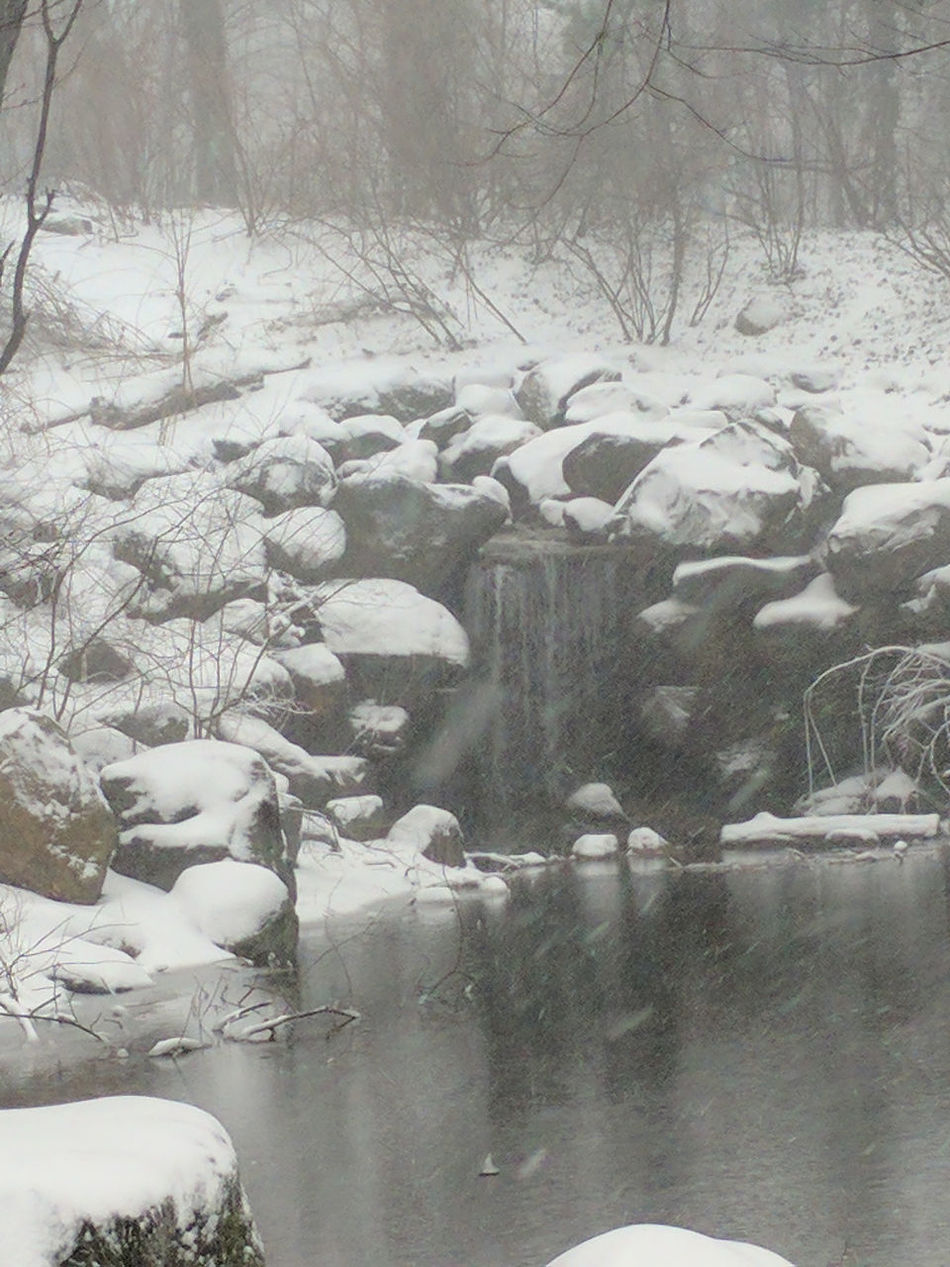 Almost Black&white Brooklyn City Park Nature Park Prospect Park Snow Snowscape Snowstorm2016 Urban Nature Waterfall White Whiteout Winter