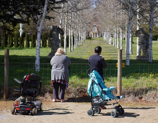 People And Places Street Photography Beauty In Nature Tree Transportation Park - Man Made Space Rear View Outdoors Casual Clothing Streetphotography Australia Streetphotography Leisure Activity