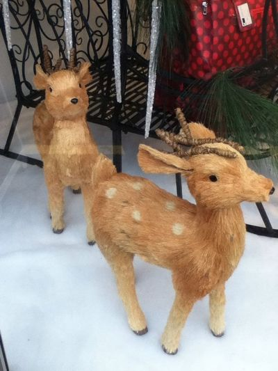 Oh #deer... No Christpocalypse.