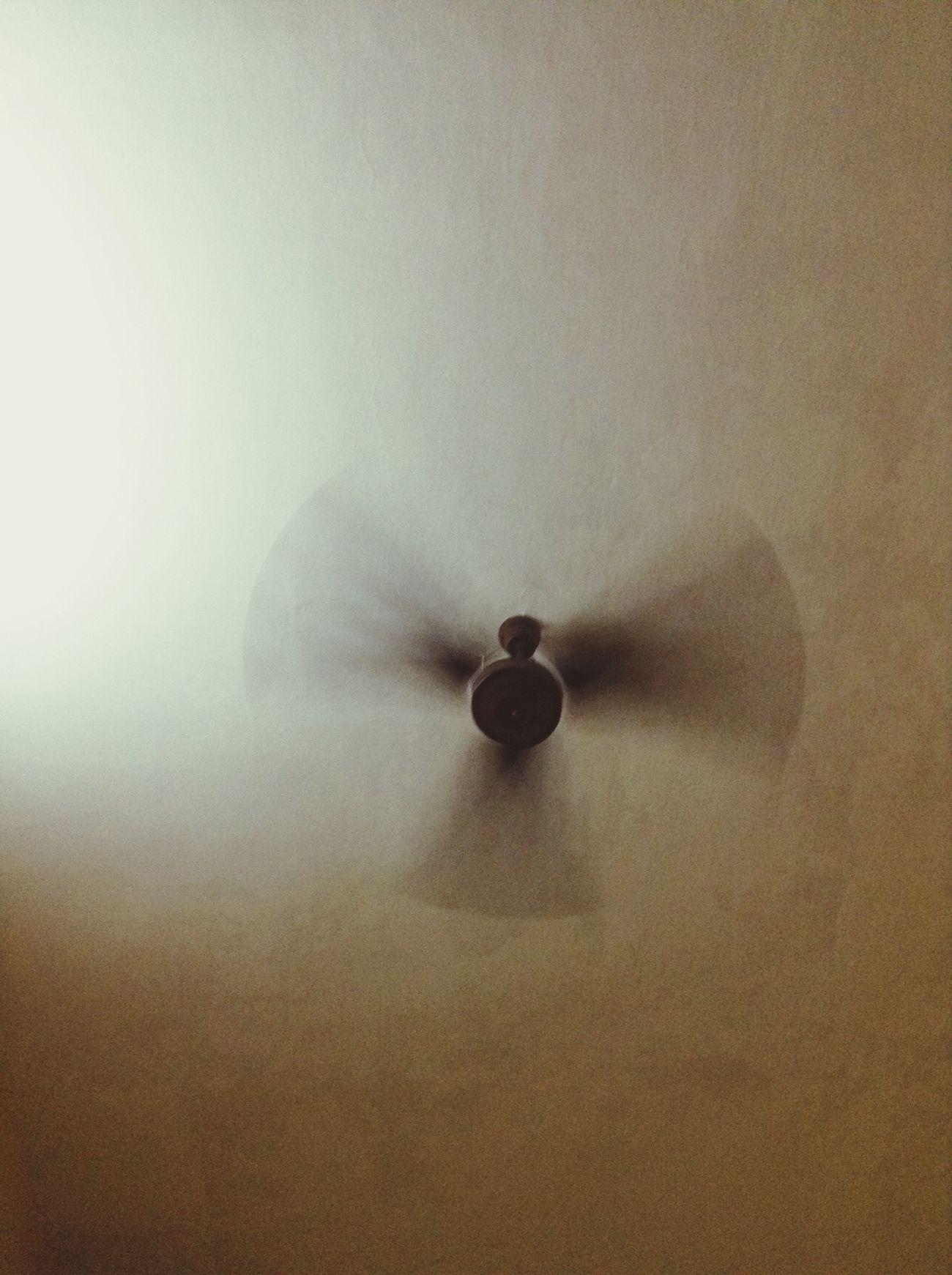 Angel FanCould Be An Angel