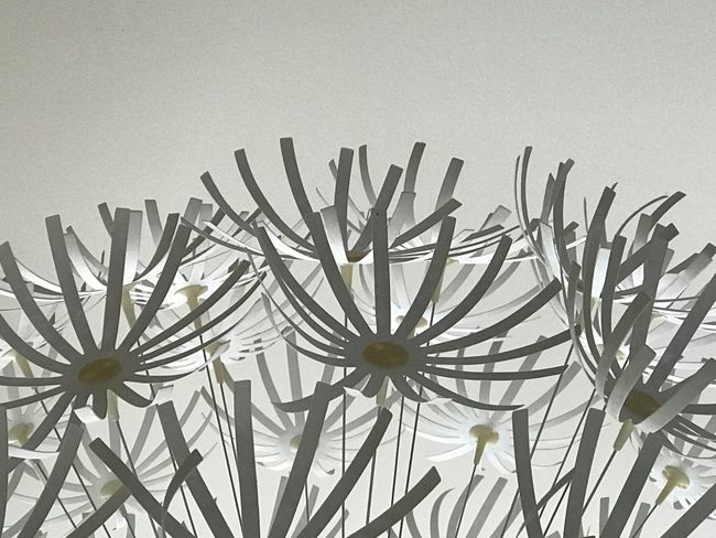 Flower Growth Close-up Plant Low Angle View Branch Nature Botany Day Houseplant Studio Shot White Background Beauty In Nature Fragility Home Interior Decorative Art White IKEA Lightshade Lamp Hängelampe