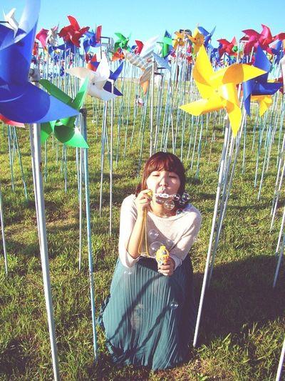 Pinwheel Soap Bubbles Imjingak South Korea Korea Trip Colors Alone