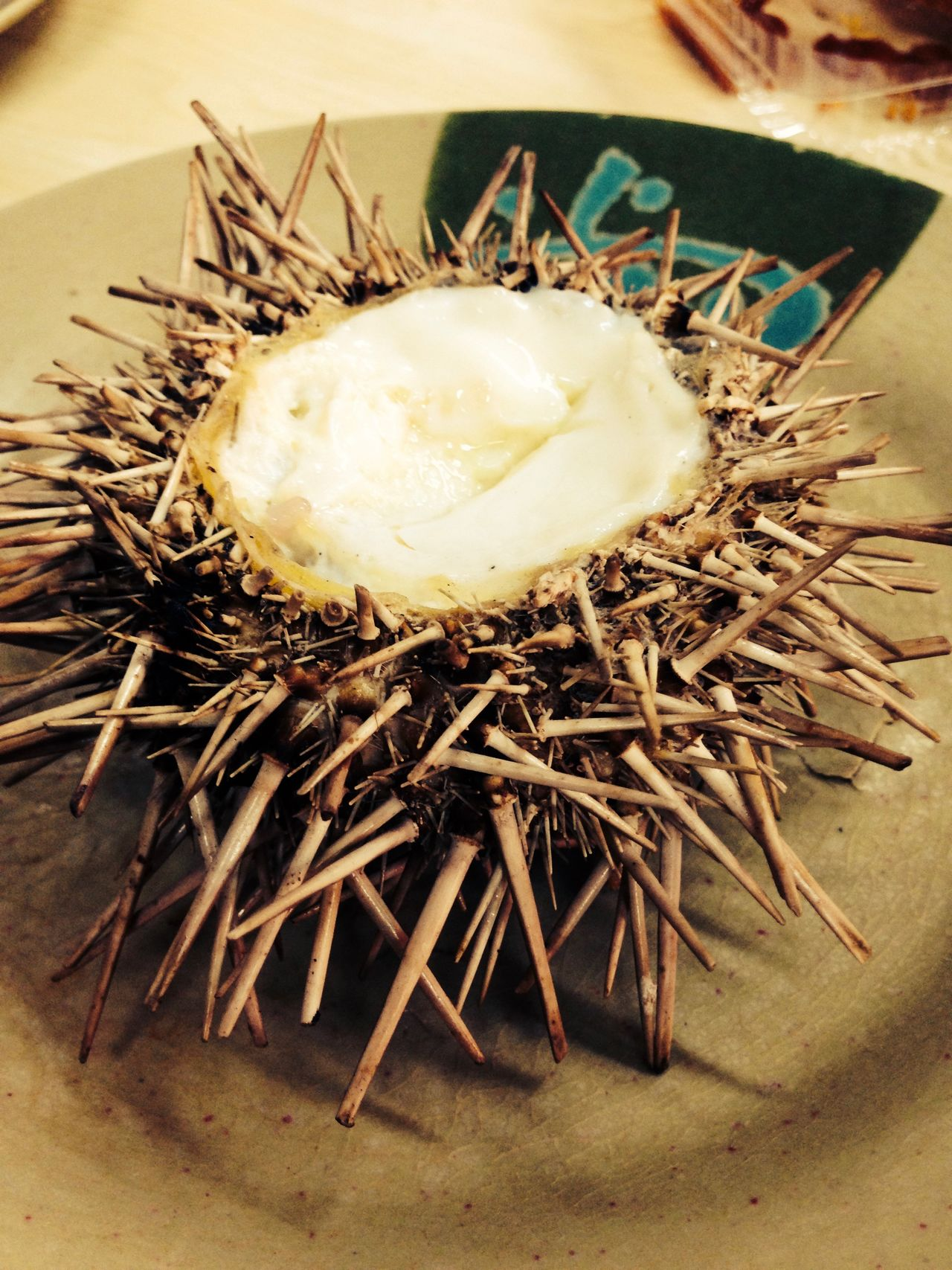 Animal Themes China Close-up Coconut Day Food Food And Drink Freshness Healthy Eating Nature No People Outdoors Seafood Seaurchin Seaurchins Spike Spiky Unusual