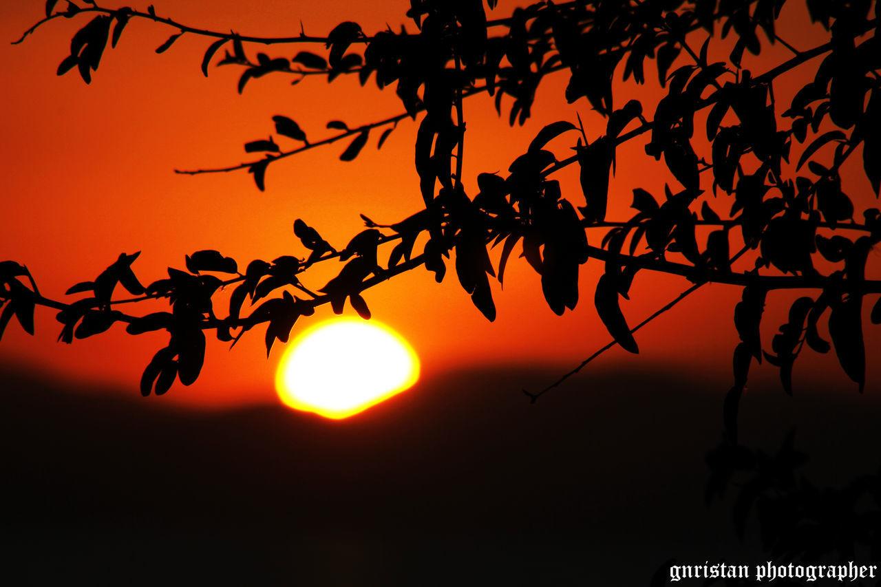Gnristan Sun Nature Orange Color Tree No People FollowMeOnInstagram Romantic Sky Nature Photography Red Mobilephotography Atmosphere Photo♡ Naturephotography Photooftheday First Eyeem Photo Followme Vscogood Outside Doğa Outdoors Vscorussia Benimkadrajim Vcsoukraine Vscoturkey