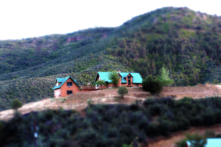 Cabin on the Hill Arizona Brown Built Structure Cabin Day Forest Green Green Color Hill Home House On A Hill Landscape Logs Metal Roof Miniature Effect Mountain No People Outdoors Prescott Prescott, AZ Scenics Selective Focus Tranquil Scene Tree Wood
