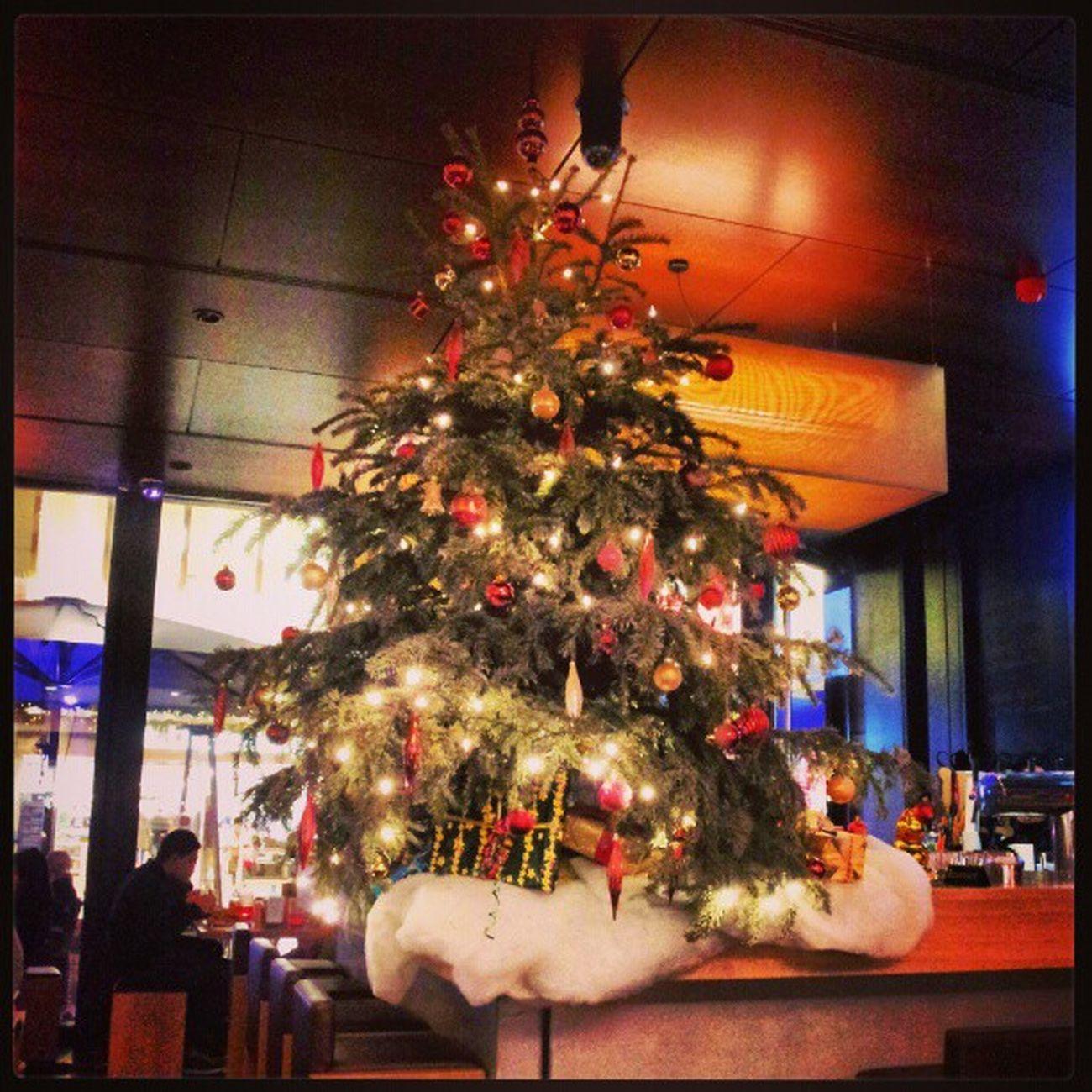 #frankfurt #city #zeil #restaurant #igers #igfamos #instgramm #instagood #spicekitchen #chrismas #tree Igfamos Instgramm Spicekitchen City Tree Restaurant Chrismas Frankfurt Igers Zeil Instagood