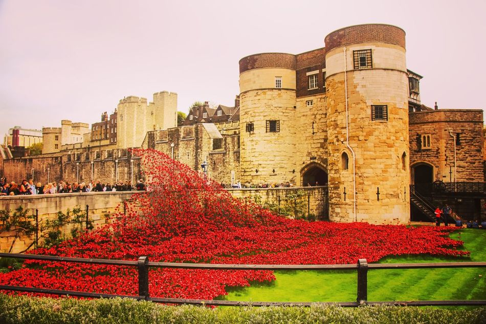 Lest we forget Flower Red Architecture Building Exterior Cityscape City History Travel Destinations No People War Outdoors Poppy Day Remeberance Day Tranquility Tower Of London Poppy Appeal