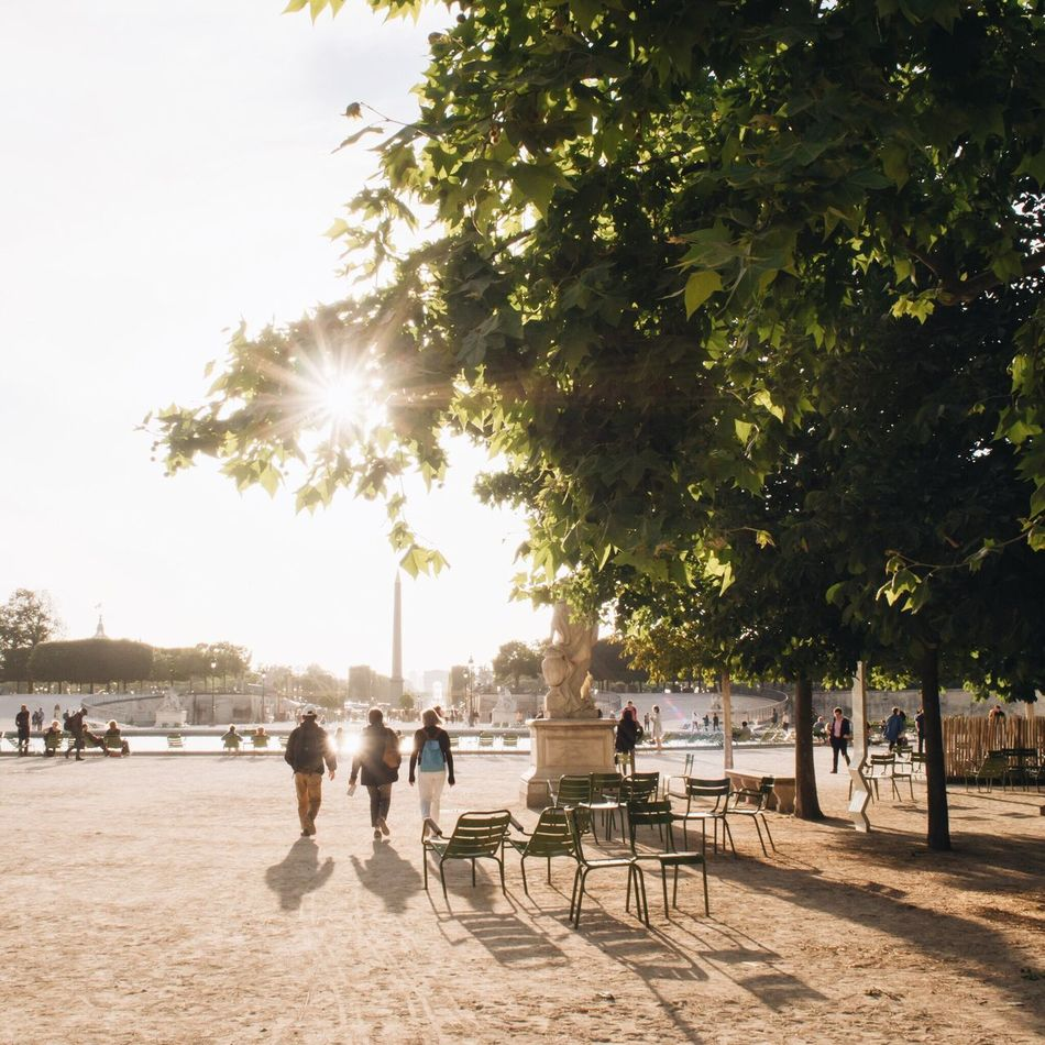 Beautiful stock photos of paris,  Adult,  Adults Only,  Beauty In Nature,  Day