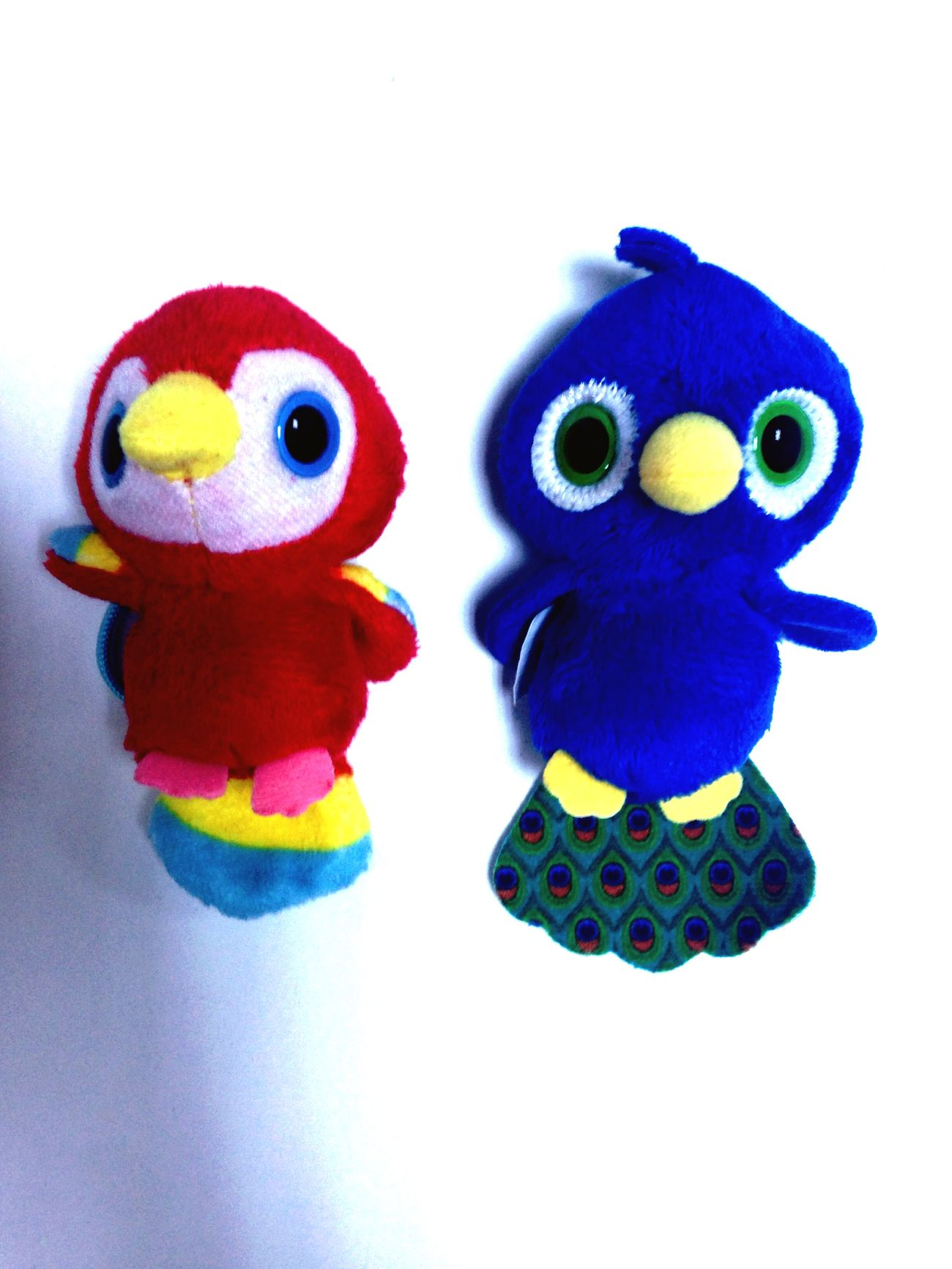 Happy :) Birds Mysister ❤ Enjoying Life I Broke Ur Pört 😂😂😂 Rio Mavili @azizekevser