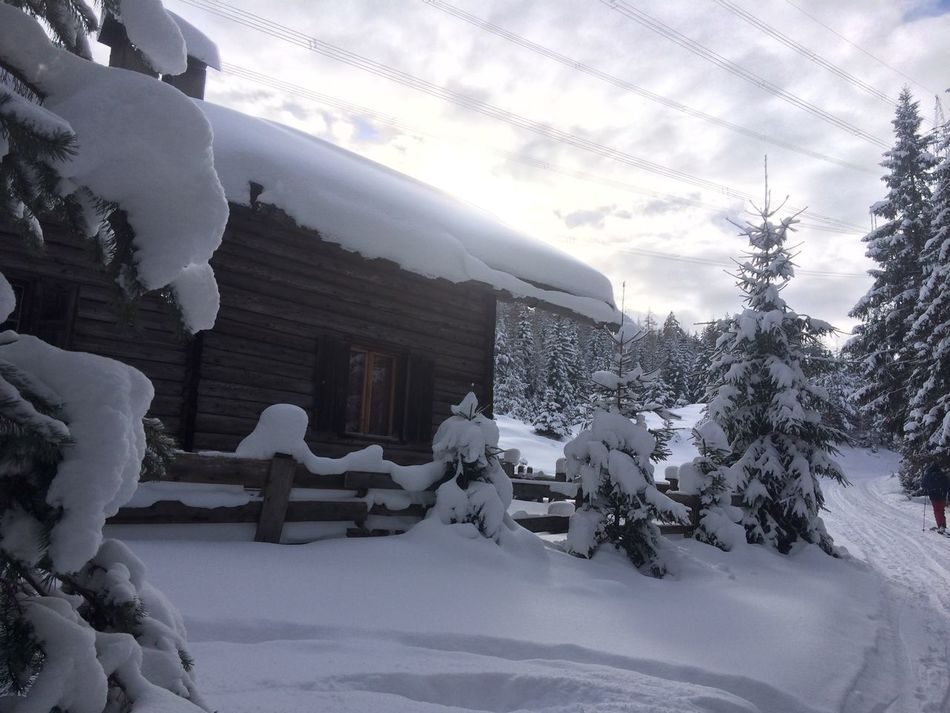 Beauty In Nature Cold Temperature Day Extreme Weather Hoiday Mountain Nature No People Outdoors Powder PowderDay Powderdays Sky Snow Snowdrift Tirol  Tree Weather Winter Winter Winterwonderland