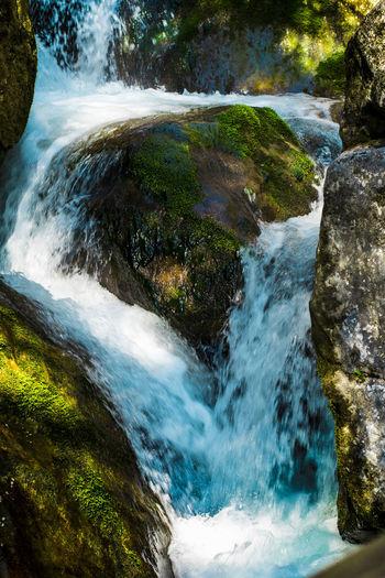 Myrafälle waterfall, Austria Moss Nature Naturepark River Rock Rocks And Water Water Waterfall Waterfalls
