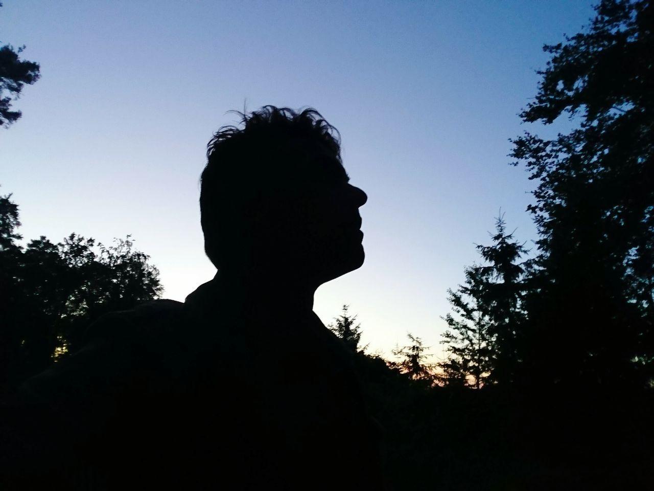 Silhouette Night Abendstimmung Beauty In Nature Schattenspiel  Kopf