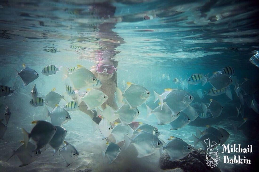 Не проехать ни проплыть ... Underwater Water Swimming Sea Life UnderSea подводой раба океан рыбы коралл вводе ребенок дети подводный мир смех улыбка любовь девочка малыш шриланка мальдивы First Eyeem Photo
