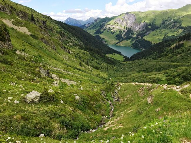 Alps Lake Beaufort  France Mountain Green Color Tranquil Scene Scenics Nature Landscape Mountain Range Tranquility Beauty In Nature Day No People Outdoors Grass Sky Tree
