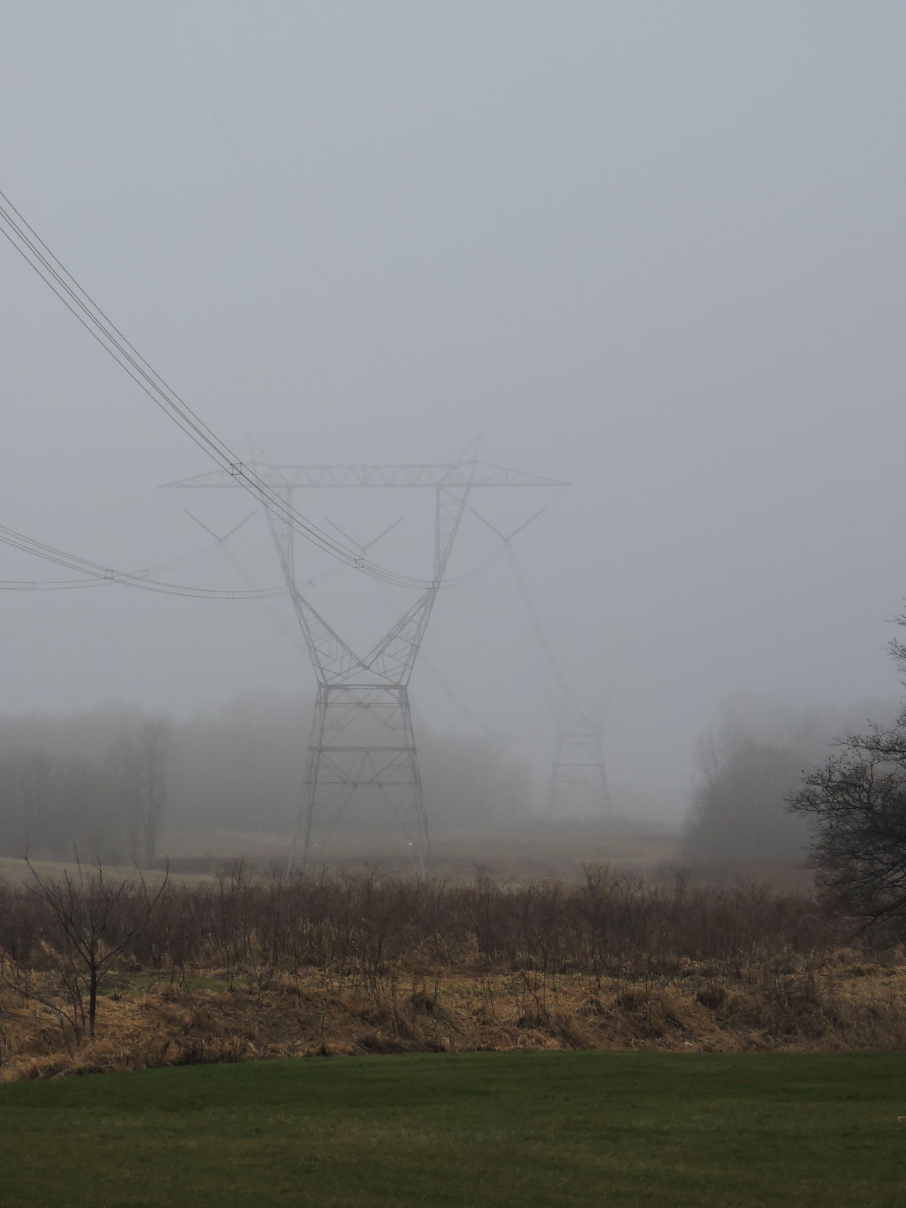 Connection Day Electricity  Electricity Pylon Field Fog Foggy Days  Grass Landscape Nature No People Outdoors Tranquility Tree