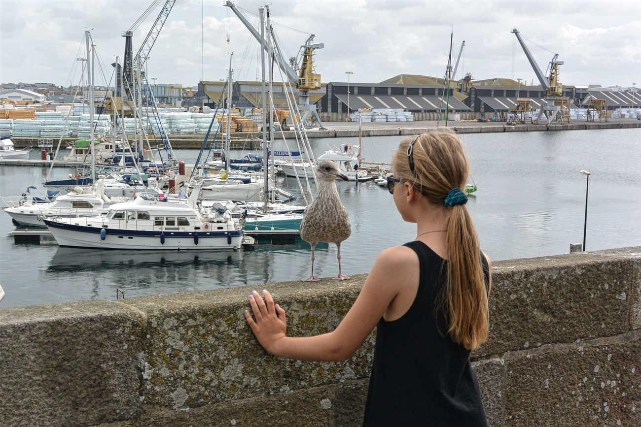 Jeux de regards entre une mouette et une jeune fille / Un petit indice pour mes nouvelles photos à venir 😉 Bretagne Brittany Focus On Foreground Jeune Fille Mouette Port Ramparts Remparts Sea Seagull Summer Young Girl Eyeem Photo People And Places