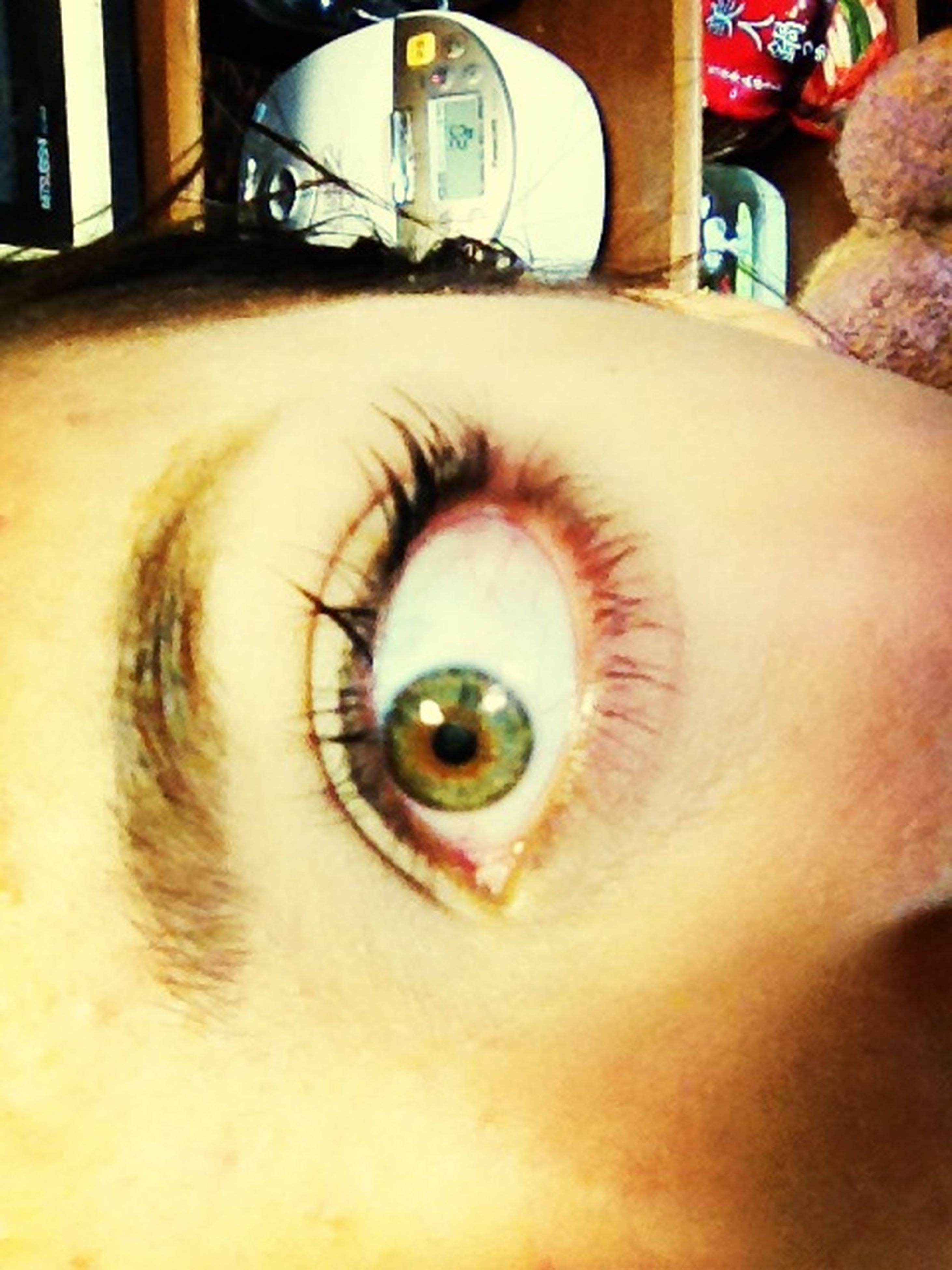 close-up, human eye, looking at camera, indoors, part of, portrait, lifestyles, human face, eyesight, reflection, headshot, leisure activity, eyelash, unrecognizable person, person, cropped, sensory perception