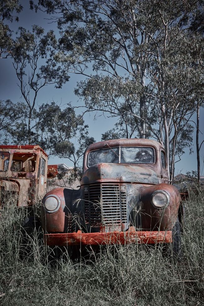 The Old Truck Overgrown Yesteryear Heritage