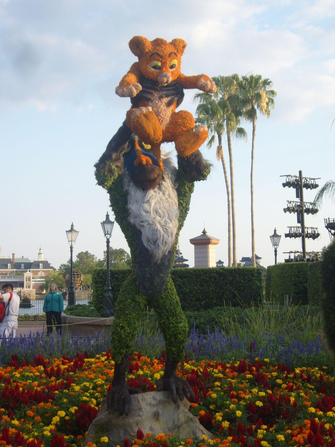 Disney Lionking Orlando Florida Epcot Taking Photos Check This Out Lion Simba Rafiki
