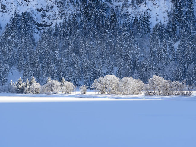 Frozen Heiterwanger See Austria Heiterwanger See Tirol  Beauty In Nature Cold Temperature Day Frozen Ice Lake Landscape Mountain Nature No People Outdoors Scenics Snow Tranquil Scene Tranquility Tree Water Winter