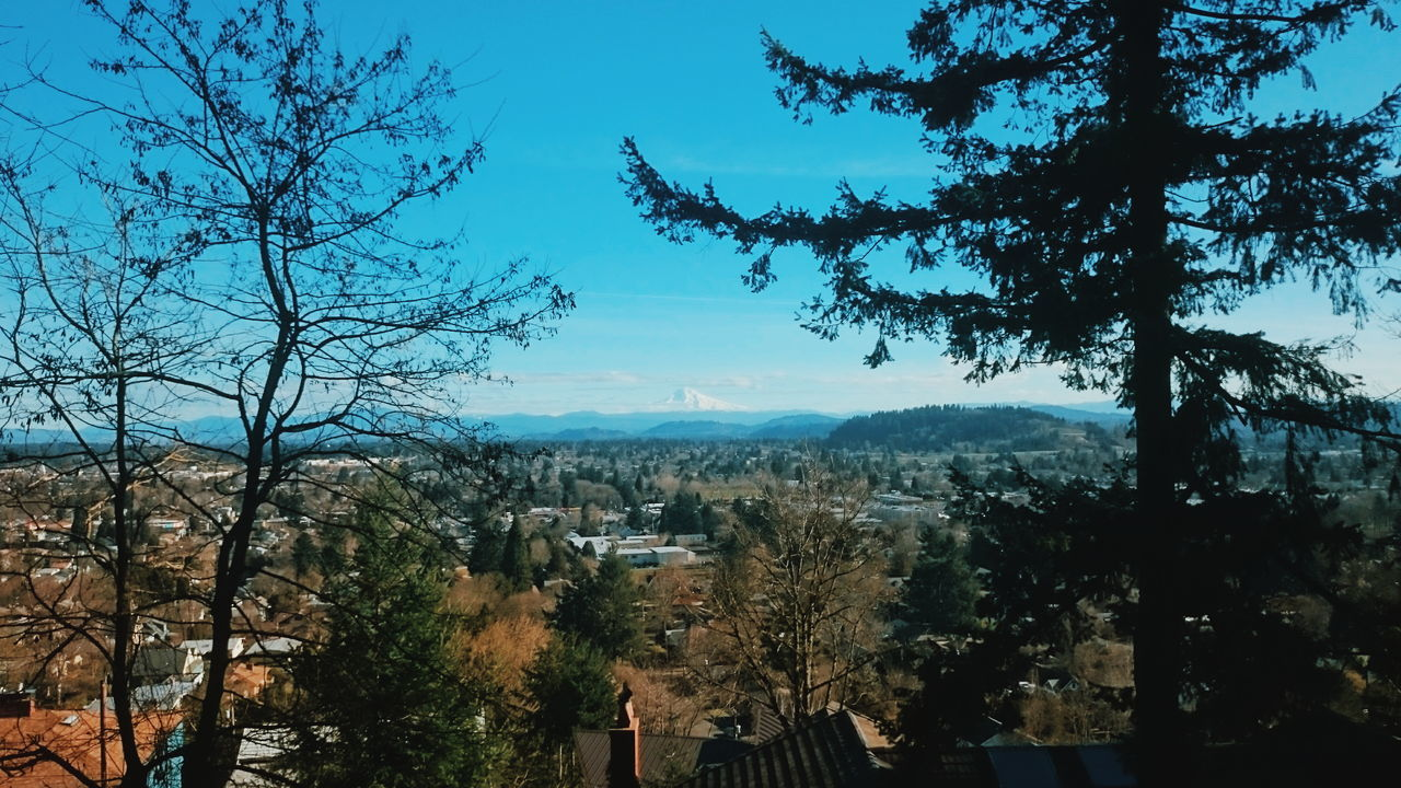 A procession of plate volcanoes extending toward Mt Hood. Landscape Urban Landscape Cascadia Cascade Mountains Mt Hood Portland View Mt. Tabor Evergreen Mountains Volcanoes Geology