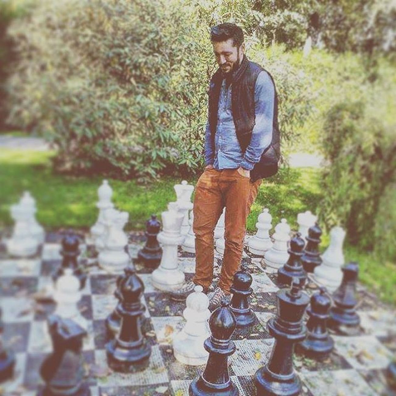 Chess Photooftheday Likelife Moves MakingMoves Colorfullife