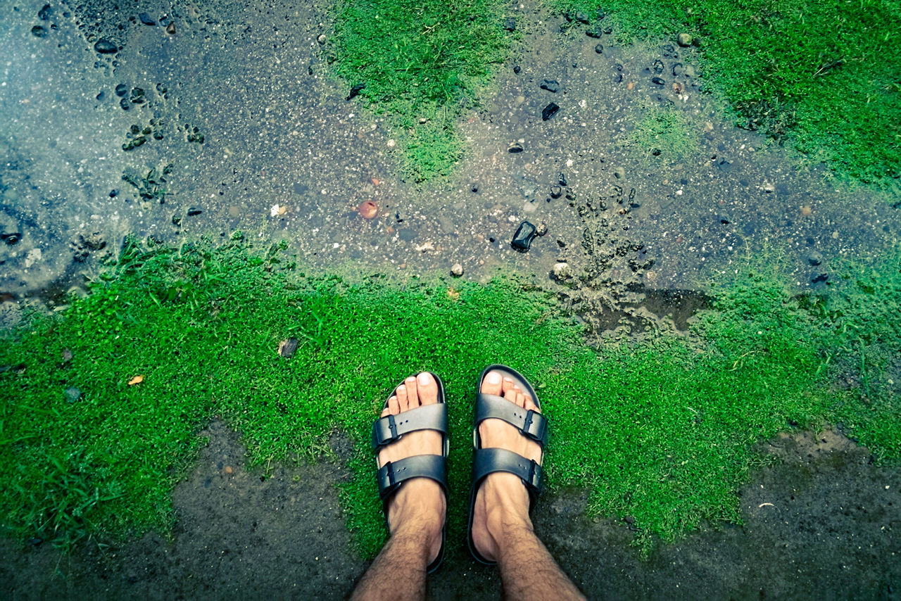low section, high angle view, standing, human leg, day, real people, outdoors, human body part, personal perspective, grass, directly above, shoe, one person, men, lifestyles, leisure activity, green color, nature, adult, people, adults only