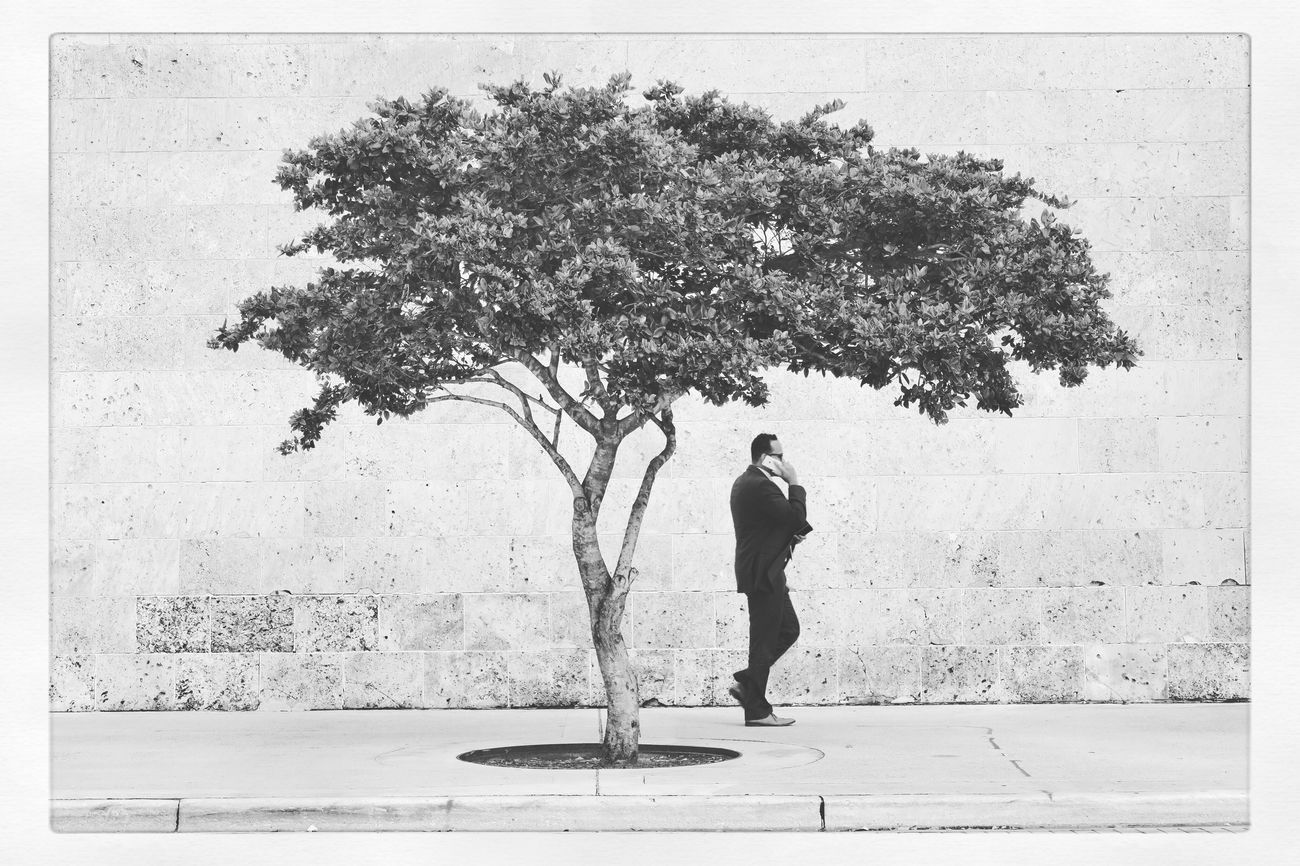 Tree People Outdoors Nature Traveling Streetphotography Real People Person EyeEm Best Edits One Person Blackandwhite Monochrome EyeEm Best Shots - Black + White One Man Only Miami