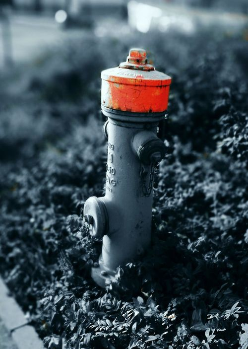 Red Outdoors Close-up Fire Hydrant No People Day Hydrants Hydrant Hydrantequipment EyeEmNewHere Huawei P9 Leica HuaweiP9 EyeEmStreetshots The City Light Minimalist Architecture