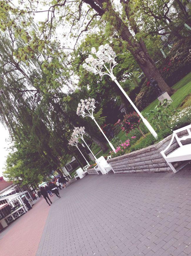 Liseberg var kuuuuul🌸 Liseberg Waw Cozy Enyoing Life