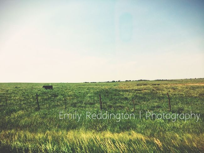 """""""I long for the countryside. That's where I get my calm and tranquility - from being able to come and find a spot of green."""" - Emilia Clarke Landscape Countryside EyeEm Nature Lover Eye4photography  EyeEm Best Edits"""