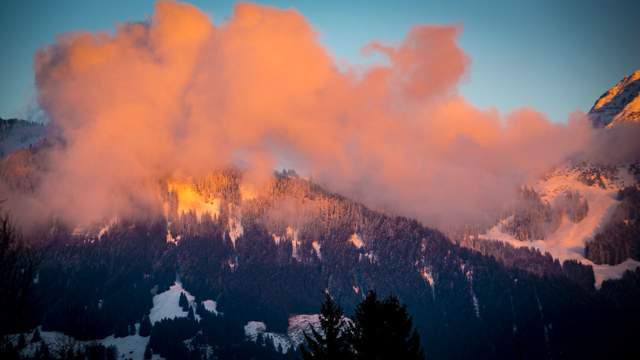 Allgäuer Alpen Bavarian Landscape Burning Day Forest Fire Heat - Temperature Lava Mountain Natural Disaster Nature No People Outdoors Sky Smoke - Physical Structure Sunset #sun #clouds #skylovers #sky #nature #beautifulinnature #naturalbeauty #photography #landscape Sunset Colored Clouds Tree