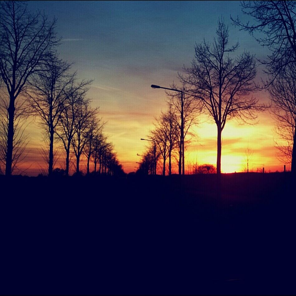 Sunset Sunset_collection Spring Evening Colorful Street I Love It ❤ Filter