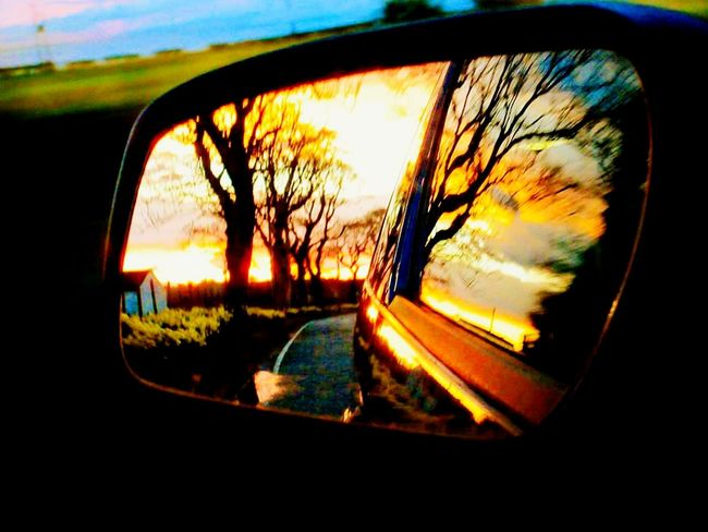Wingmirror Shot  Wing Mirror  Sunset #sun #clouds #skylovers #sky #nature Beautifulinnature Naturalbeauty Photography Landscape [ [a:11504336] Bo'ness Scotland Pretty♡ Check This Out Showcase May Spring Nights EyeEm Gallery EyeEm Best Shots - Nature ForTheLoveOfPhotography Springtime EyeEm Best Shots Eye4photography  Summer Is Coming Daffodils EyeEm Flower Wildflowers My Favorite Photo