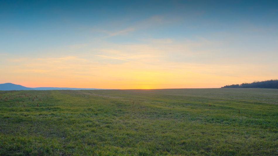 Beauty In Nature Field Grass Landscape Nature Outdoors Pilisborosjeno Sky Sunset Background Countryside Country Hungary