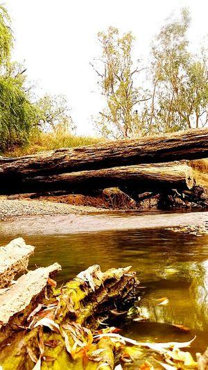 Namoi river near Gunnedah NSW Australia Taking Photos Relaxing Australian Landscape Bush Australia River