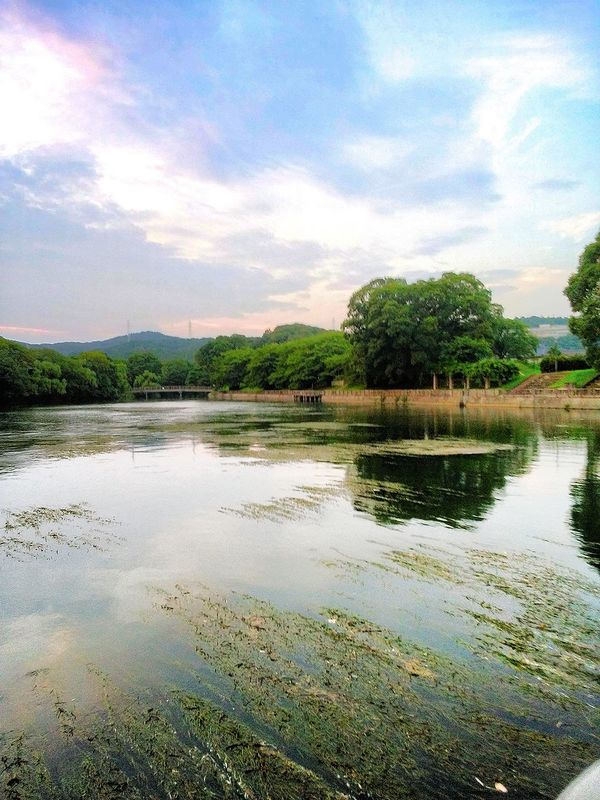 Hi! Taking Photos Hello World Relaxing Enjoying Life Pond Landscape Walk In The Park Kurashiki Japan 倉敷