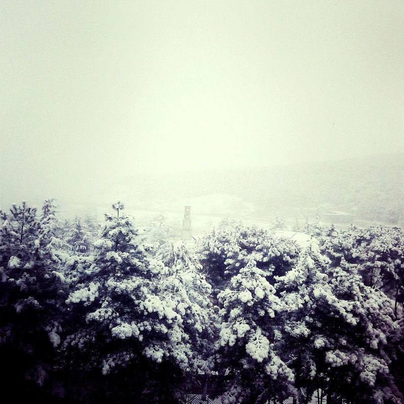 WhiteSnow ❄ Winter Is Over⛄❄ After Winter