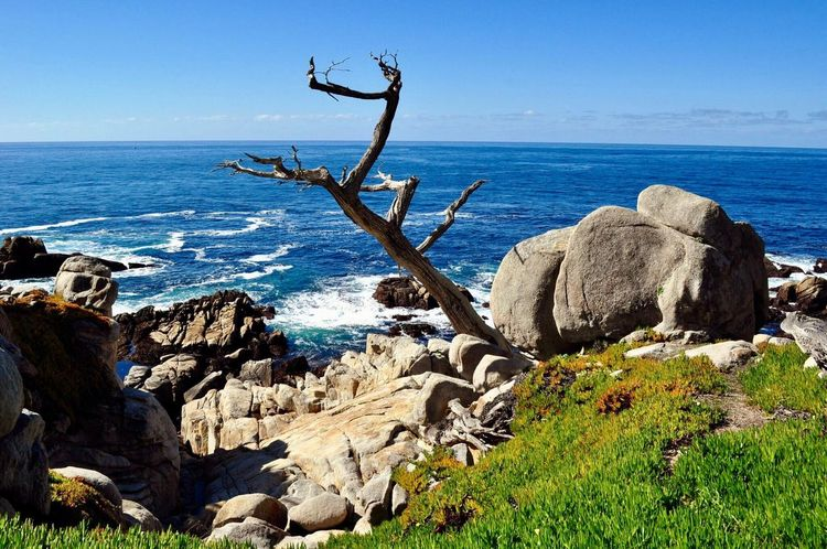Sea Nature Beauty In Nature Water Scenics Blue Tranquil Scene No People Outdoors Day Sky Monterey Ca