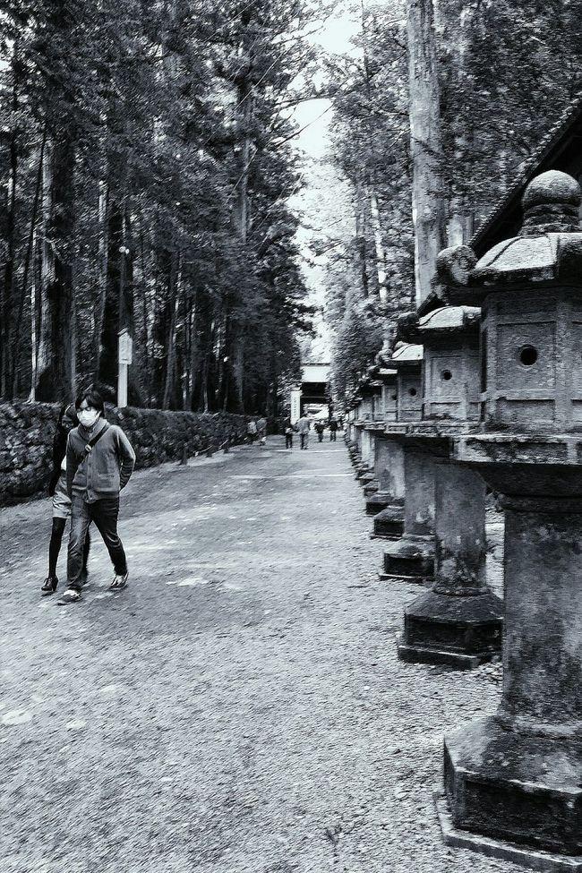 Stone Lanterns Nikko Toshogu Shrine Japanese Culture Japan Travelphotography Streetphotography Bnw Bnw_world Bnw_captures Bnw_japan