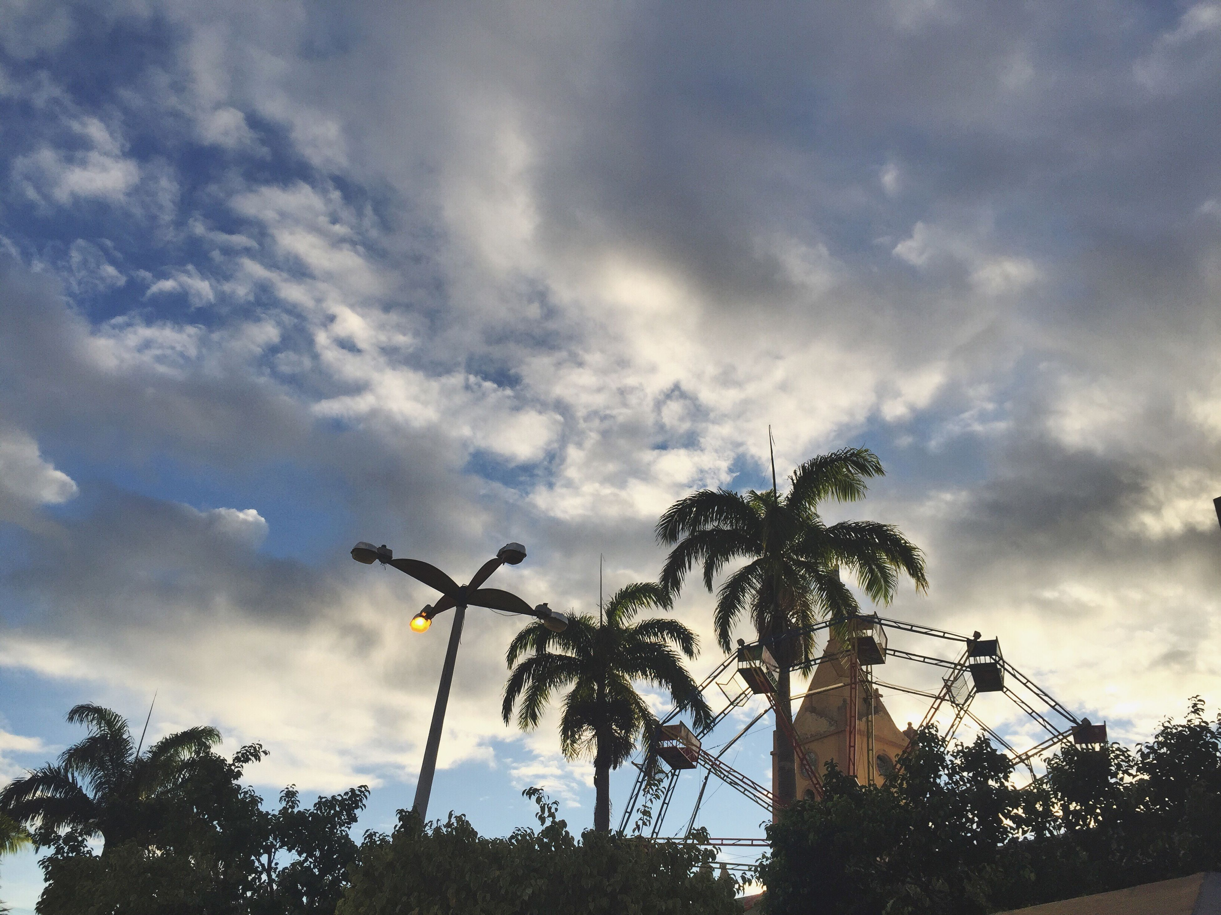 low angle view, tree, sky, cloud - sky, cloudy, silhouette, cloud, nature, growth, branch, tranquility, overcast, day, outdoors, no people, street light, beauty in nature, palm tree, weather, built structure