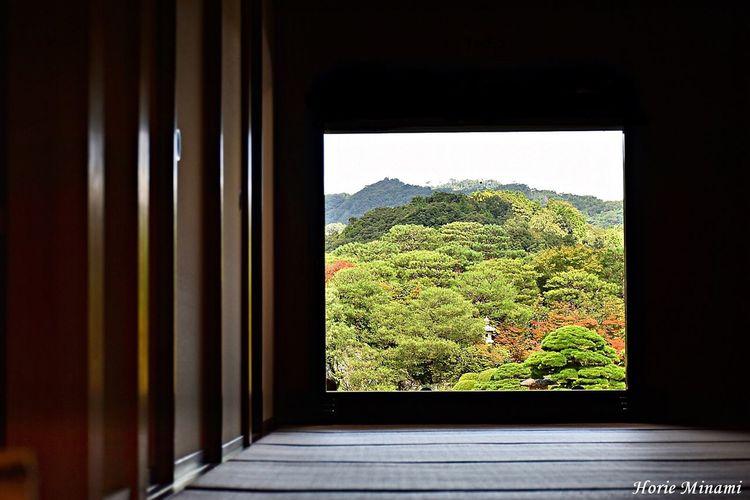 Window No People Beauty In Nature EyeEm Team EyeEm Best Shots EyeEmNewHere Japan 島根県 足立美術館
