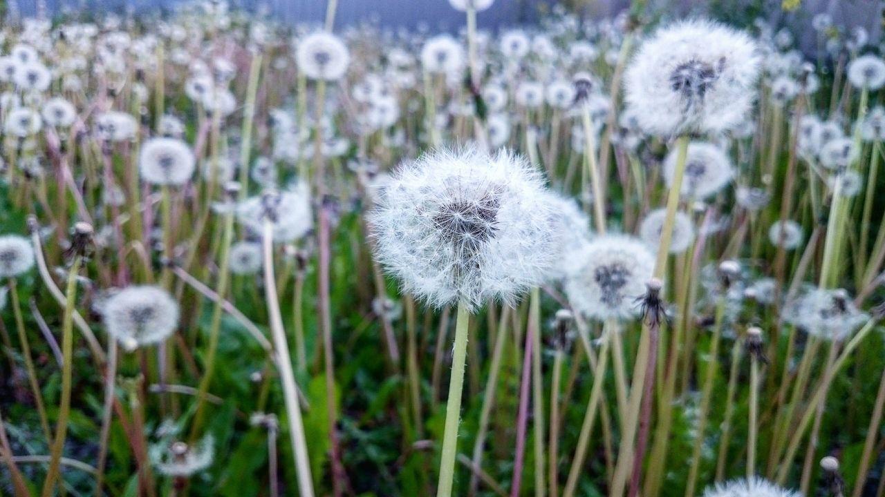 Nature Love Latvia Nature Naturegifts 🌈 Beautiful Nature Photography