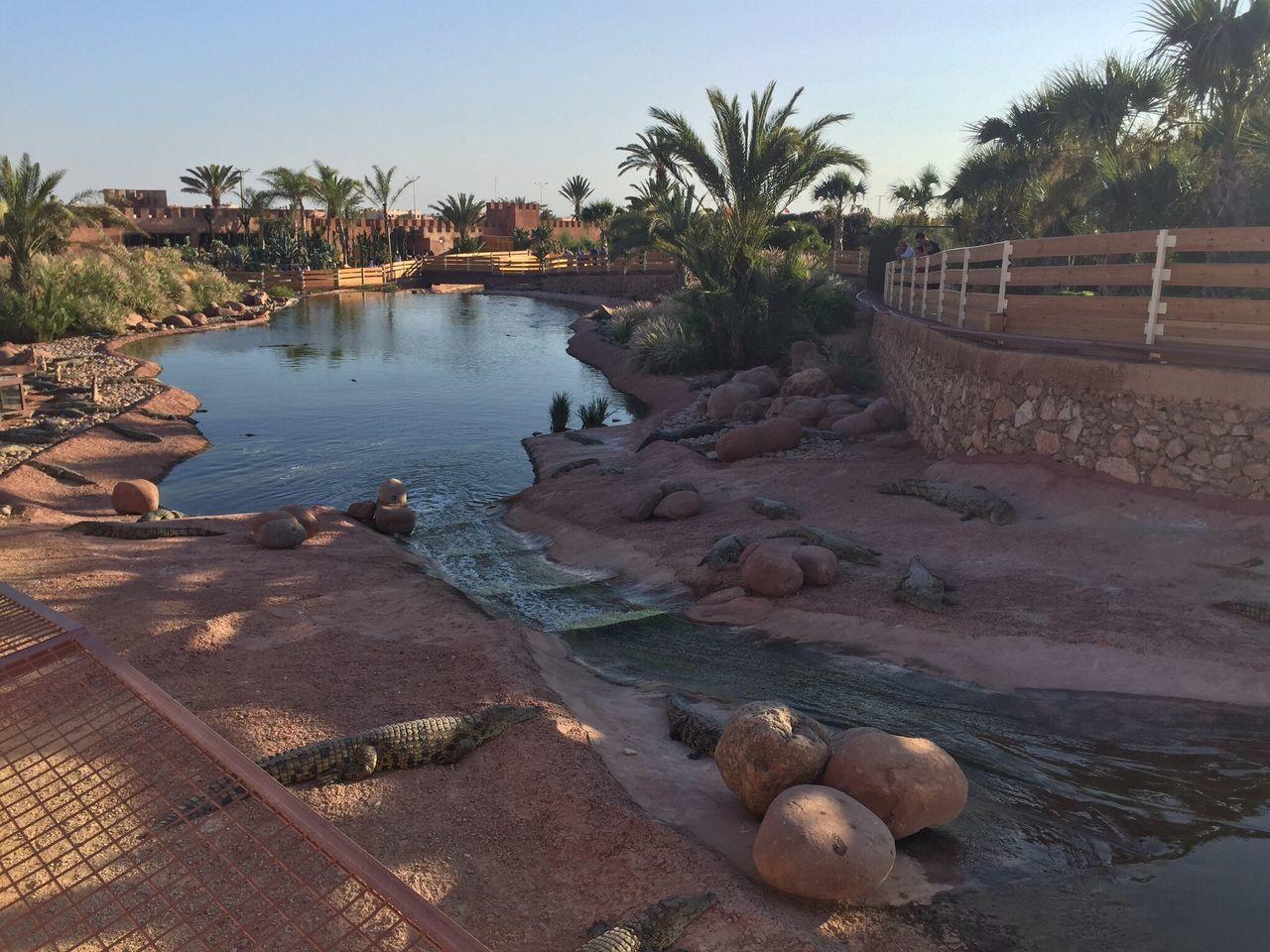 Maroc Enjoying The View Landscape Lake EyeEm Nature Lover Nature Amazing ~ Paradise Crocodile IPhoneography Miles Away