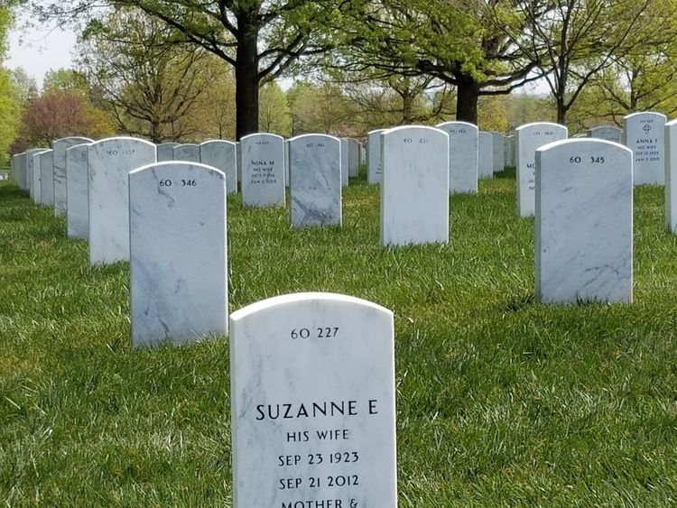 Tombstone Cemetery Day Grass Memorial Outdoors Grave Sky War Tree Nature Fragility Beauty Arlington Cemetery Arlington National Cemetery Headstones In A Row Memories Soldiers' Graves Death Sacred Ground Tranquility Textures And Patterns
