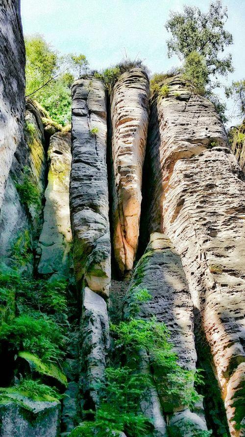 Adrspach, Czechy. Skalne Miasto. Adršpach Adršpach Czechy Czech Skały Rocks Skalne Miasto Nature Travel Enjoying Life