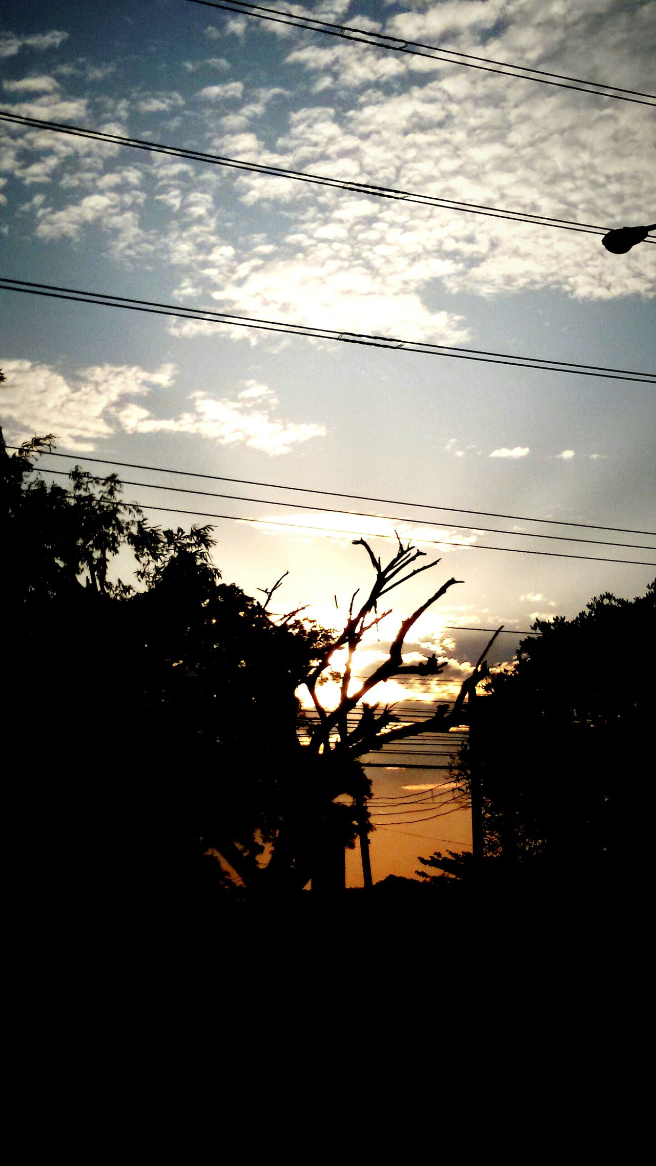 Sunset, Sundown, countryscape, Shillouette, Light And Darkness, Atmospheric,